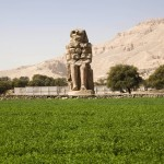 Lush alfalfa field on Nile bank carpets ancient Pharaoh monument