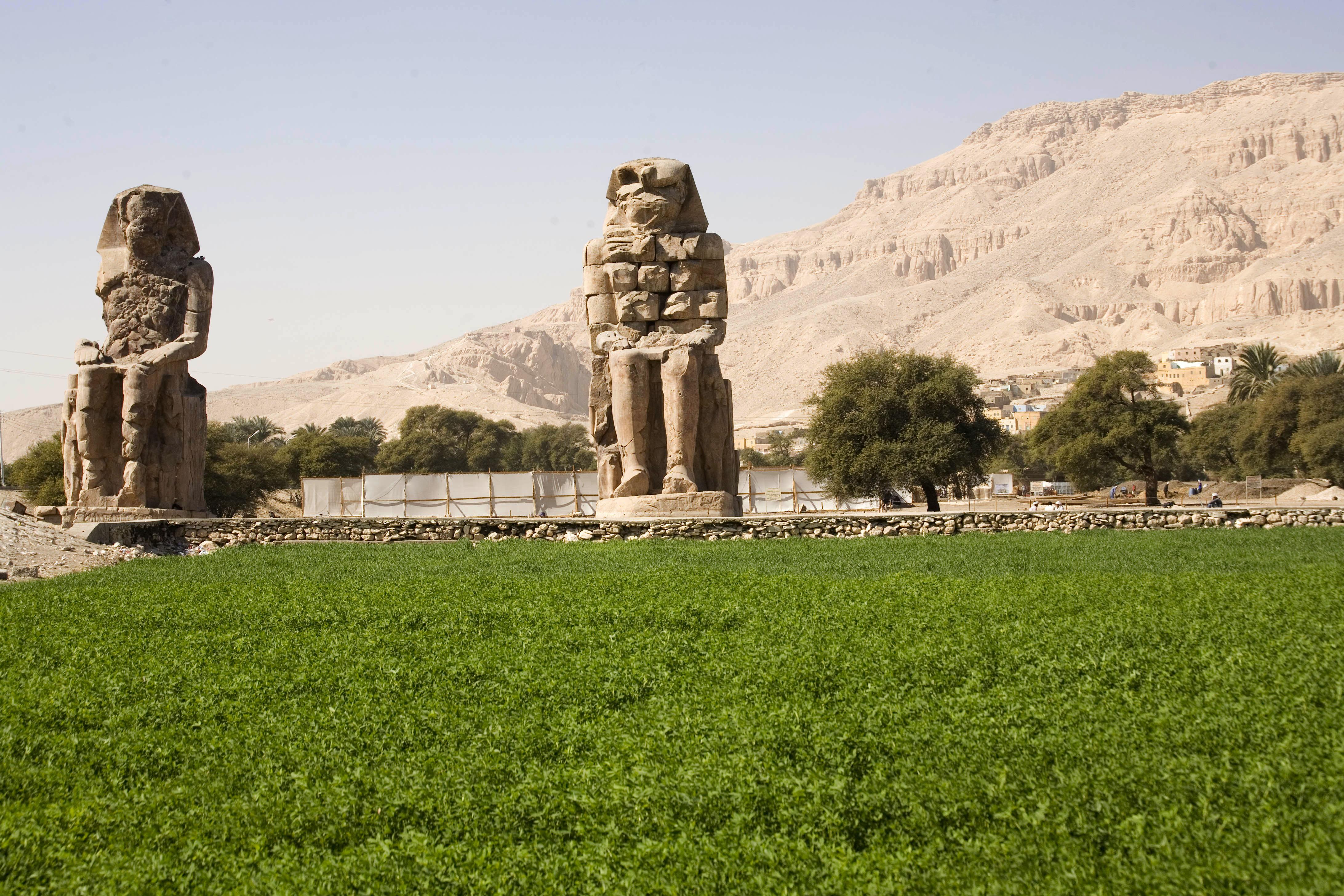 Lush alfalfa field on Nile bank carpets ancient Pharaoh monument