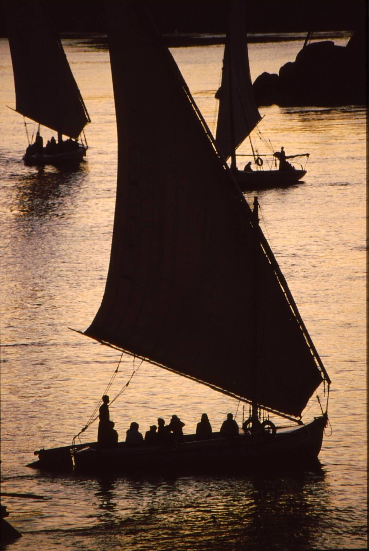 Felucca sails at sunset