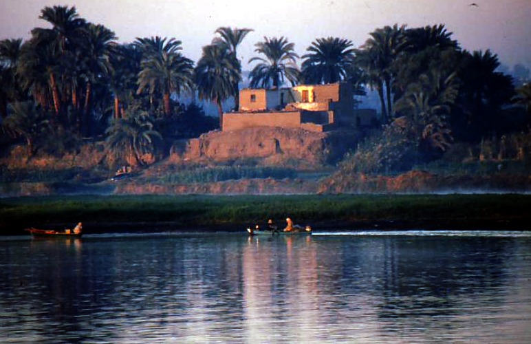 First morning light on Nile bank