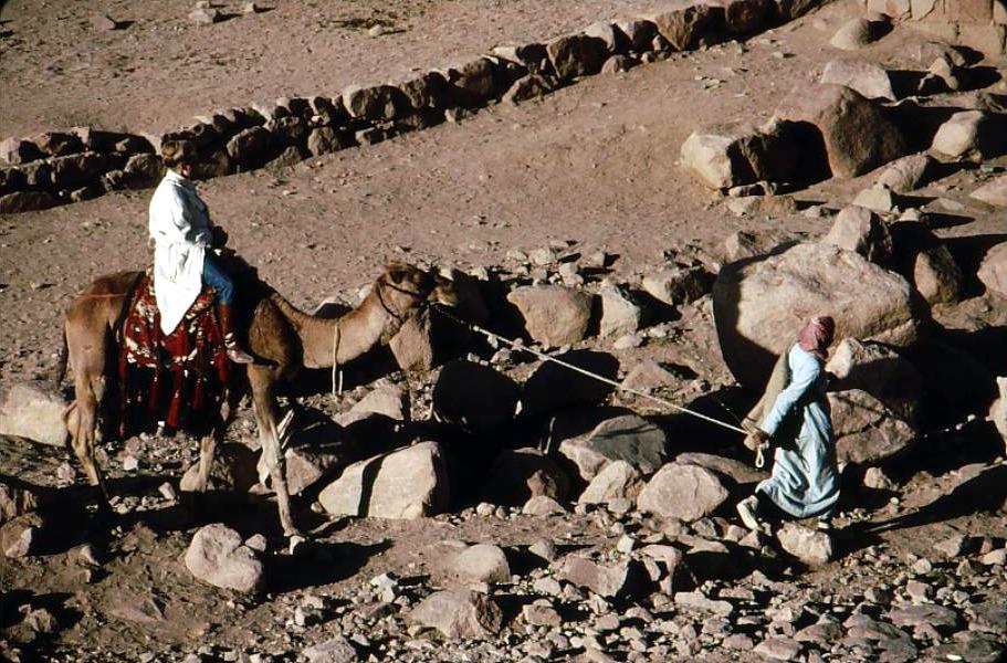 Pilgrim arriving monastery by camel